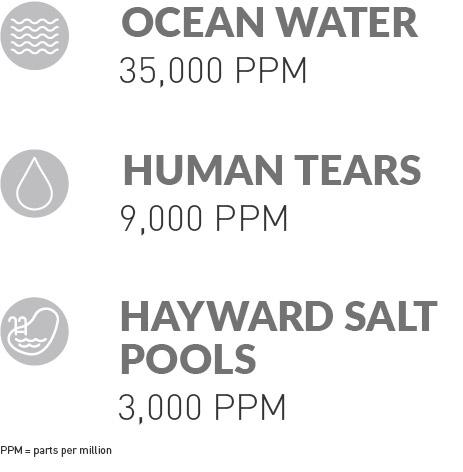 Hayward Salt Pools